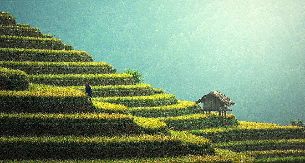 10 lieux à voir en thailande